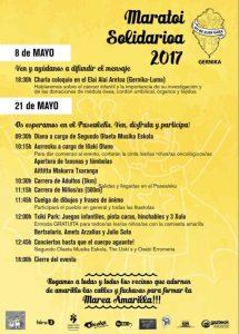 Maraton solidario 2017